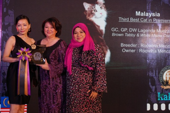 Our finest achievement - receiving Muezza's trophy for being 3rd Best Cat in Premiership (Malaysia)