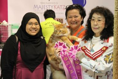 Yaeko Takano presenting Putra with his 2nd Best Longhair Champion and his 3rd Best Overall Champion ribbons